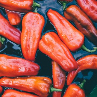 red bell pepper on body of water
