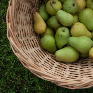 pile of green pears in wicker basket